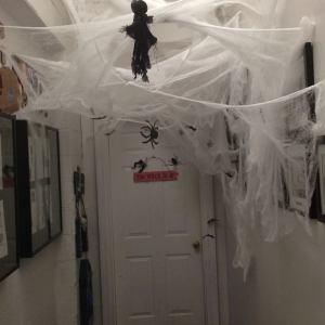 Hallway webcob